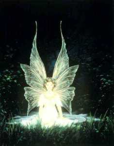 blonde shadow fairy