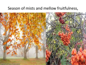 season-of-mists-and-mellow-fruitfulness